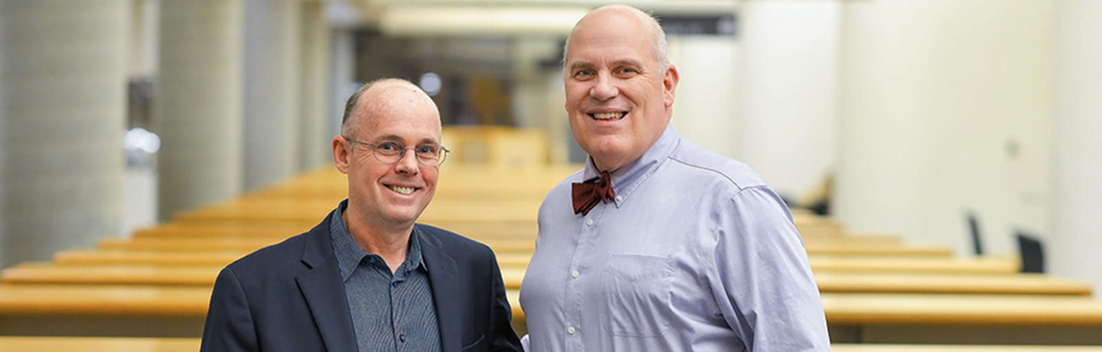Brett McDonnell and Paul Vaaler
