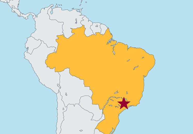 Fundacao Getulio Vargas Fgv Sao Paulo Carlson School Of Management